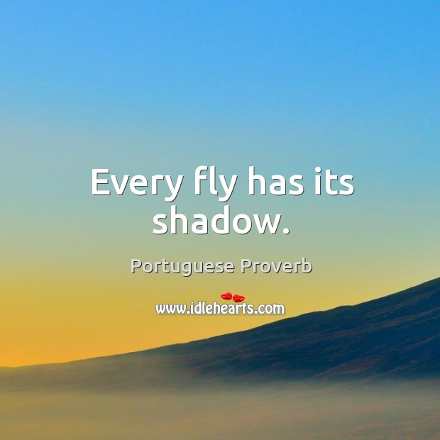 Image, Every fly has its shadow.