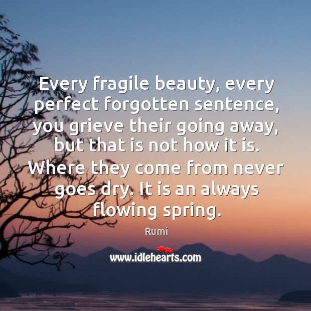 Every fragile beauty, every perfect forgotten sentence, you grieve their going away, Image