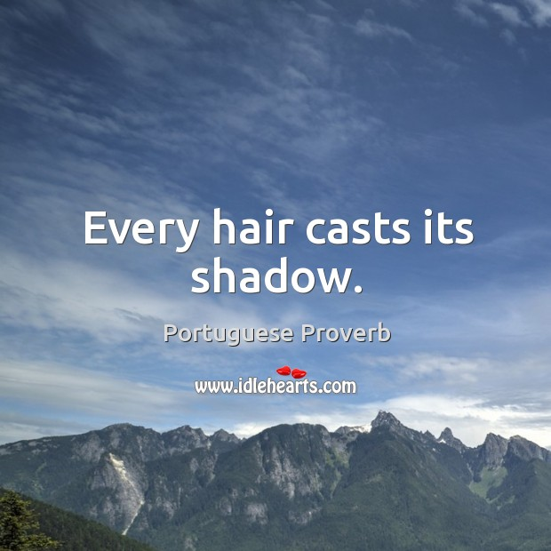 Every hair casts its shadow. Image