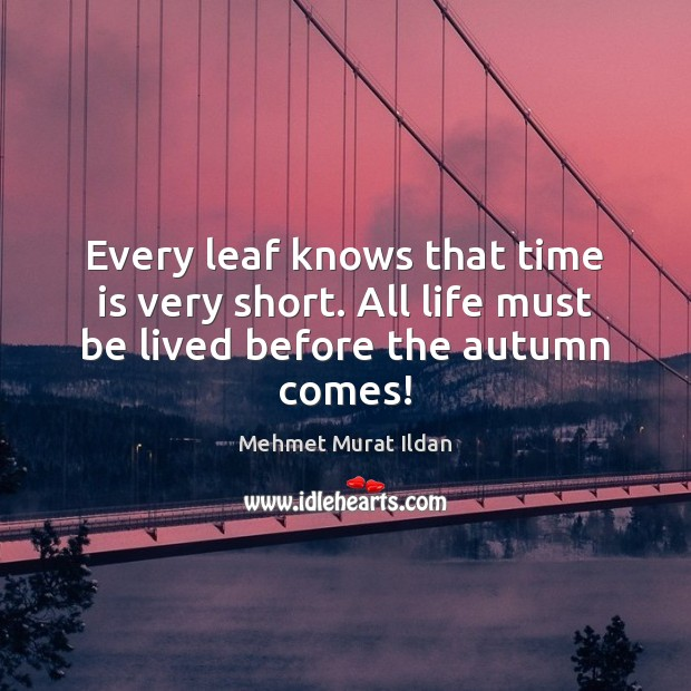 Image, Every leaf knows that time is very short. All life must be lived before the autumn comes!
