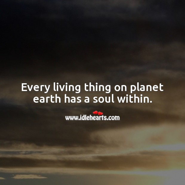 Every living thing on planet earth has a soul within. Soul Quotes Image