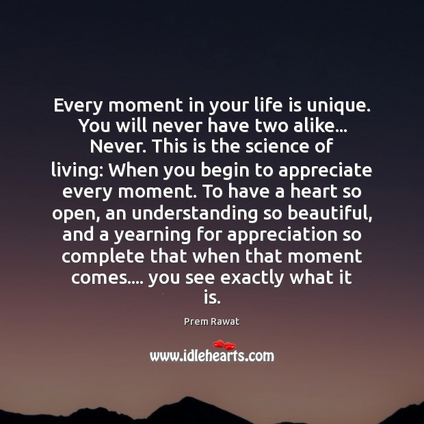 Every moment in your life is unique. You will never have two Appreciate Quotes Image
