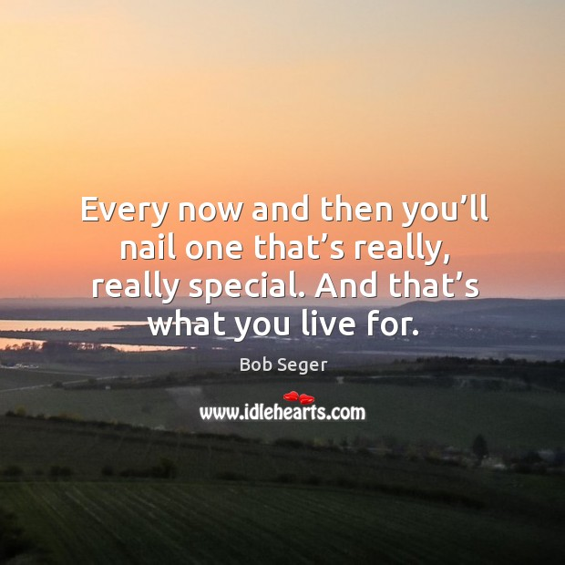 Every now and then you'll nail one that's really, really special. And that's what you live for. Bob Seger Picture Quote