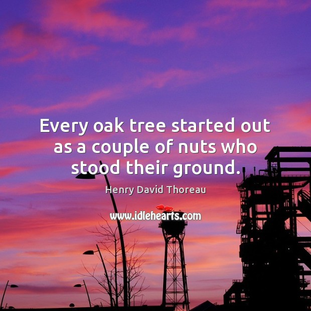Every oak tree started out as a couple of nuts who stood their ground. Image