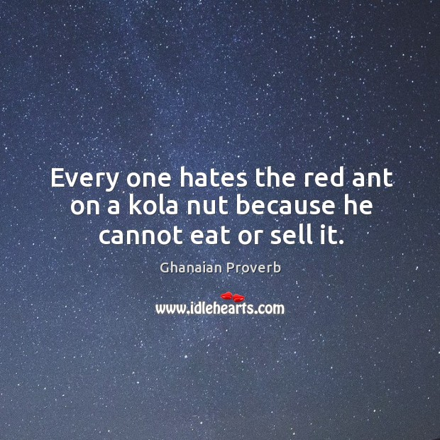 Every one hates the red ant on a kola nut because he cannot eat or sell it. Ghanaian Proverbs Image