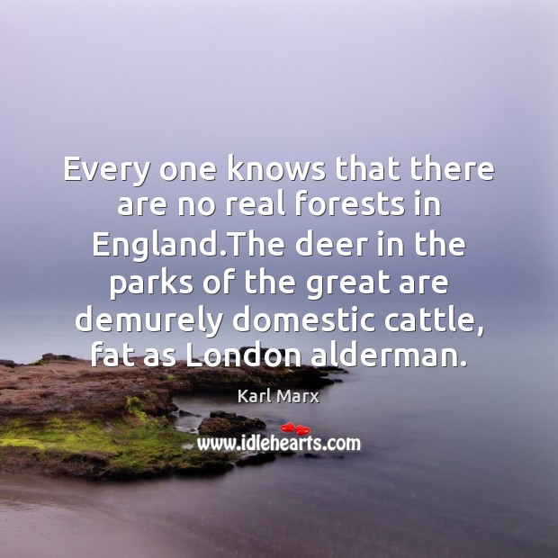 Image, Every one knows that there are no real forests in England.The