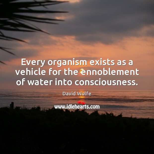 Every organism exists as a vehicle for the ennoblement of water into consciousness. Image