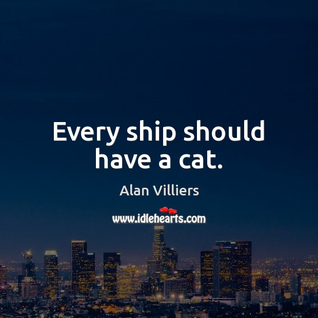 Image, Every ship should have a cat.