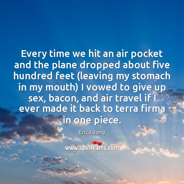 Every time we hit an air pocket and the plane dropped about Erica Jong Picture Quote