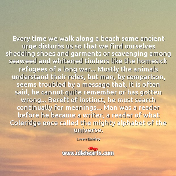 Every time we walk along a beach some ancient urge disturbs us Loren Eiseley Picture Quote