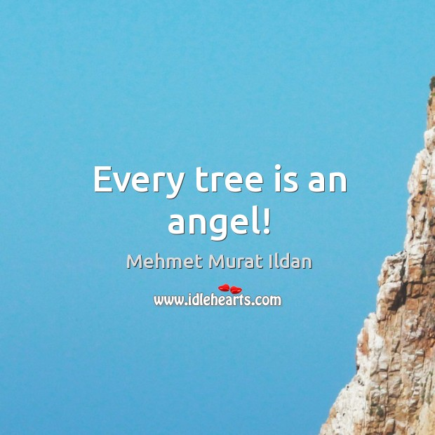Every tree is an angel! Image