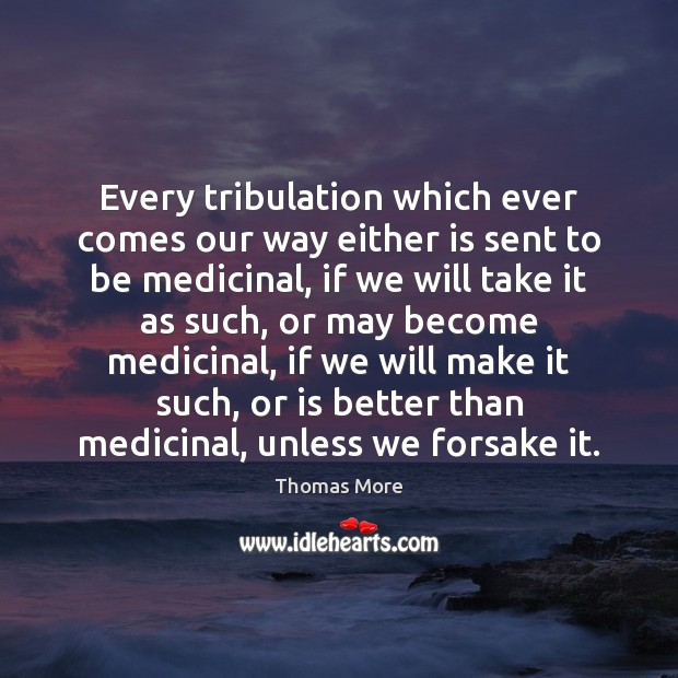 Every tribulation which ever comes our way either is sent to be Thomas More Picture Quote