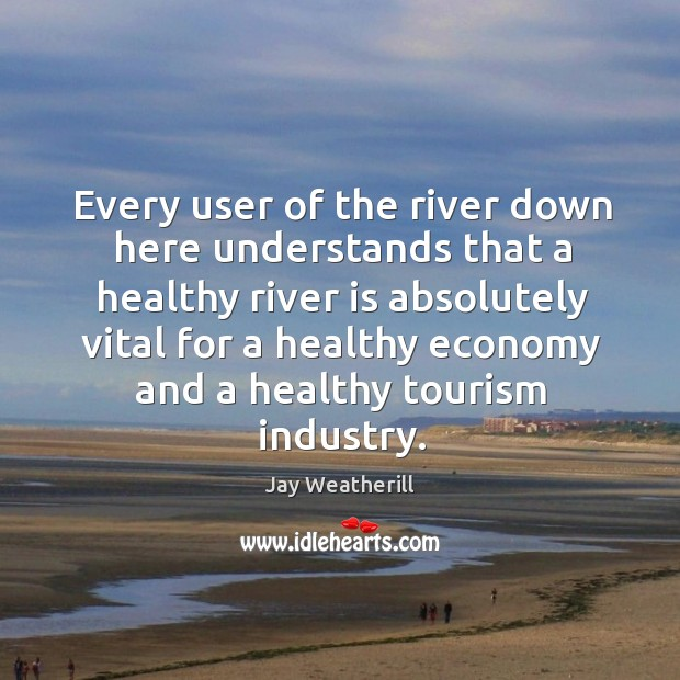 Every user of the river down here understands that a healthy river is absolutely vital for Jay Weatherill Picture Quote