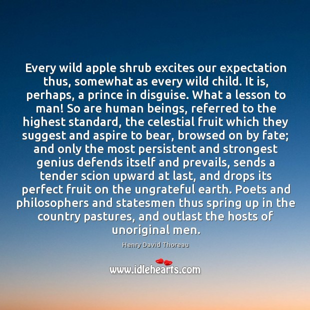 Every wild apple shrub excites our expectation thus, somewhat as every wild Image
