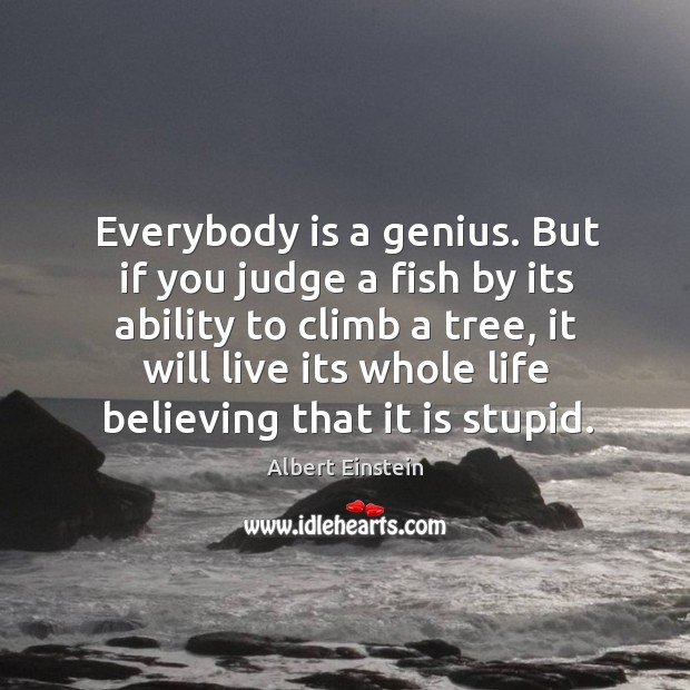 Image, Everybody is a genius. But if you judge a fish by its ability to climb a tree