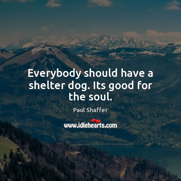 Everybody should have a shelter dog. Its good for the soul. Image