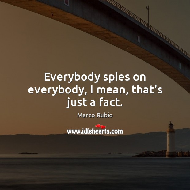 Everybody spies on everybody, I mean, that's just a fact. Marco Rubio Picture Quote