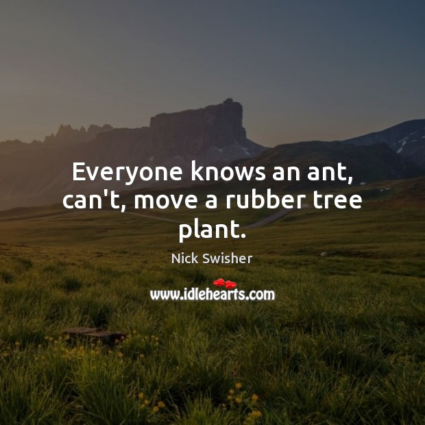 Image, Everyone knows an ant, can't, move a rubber tree plant.