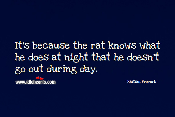 It's because the rat knows what he does at night that he doesn't go out during day. Haitian Proverbs Image