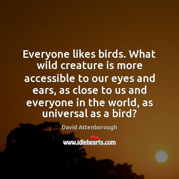 Image, Everyone likes birds. What wild creature is more accessible to our eyes