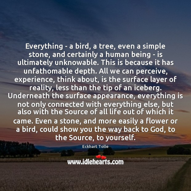 Everything – a bird, a tree, even a simple stone, and certainly Image