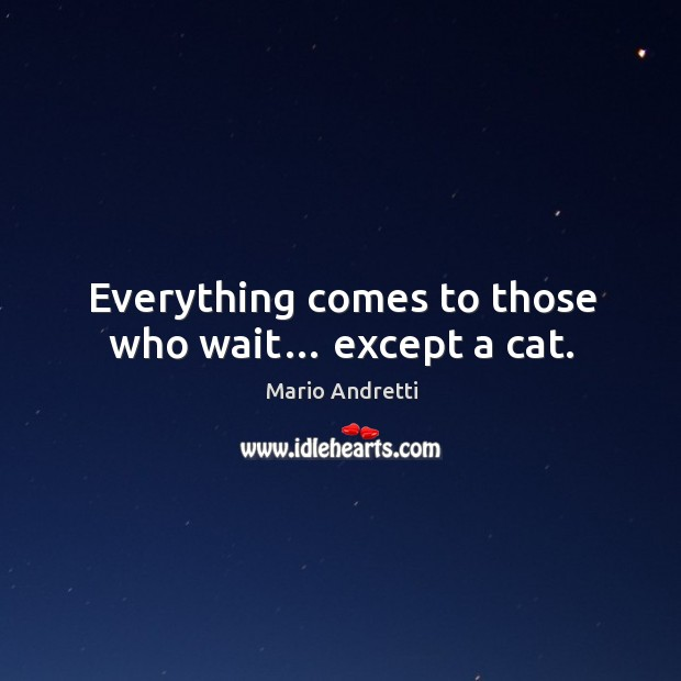 Everything comes to those who wait… except a cat. Mario Andretti Picture Quote