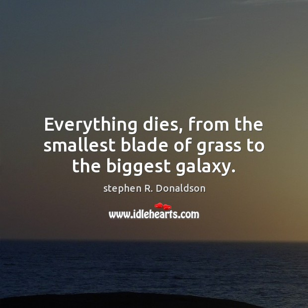 Everything dies, from the smallest blade of grass to the biggest galaxy. Image