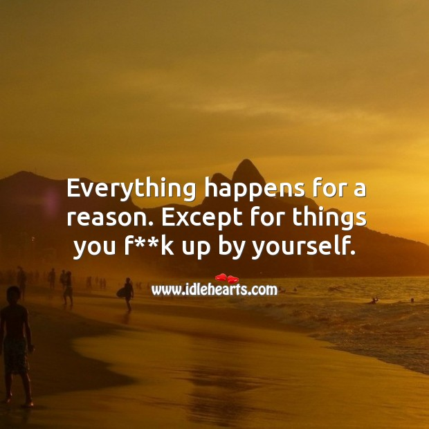 Everything happens for a reason. Except for things you f**k up by yourself. Image