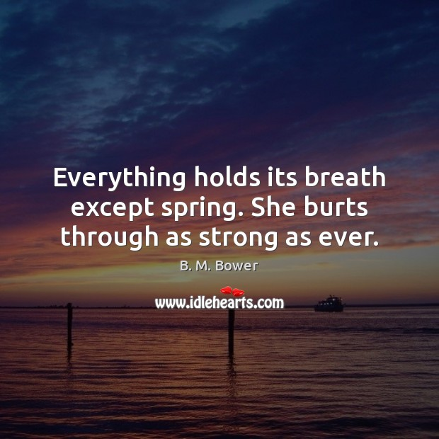 Image, Everything holds its breath except spring. She burts through as strong as ever.
