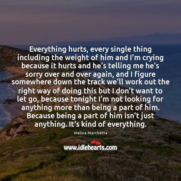 Everything hurts, every single thing including the weight of him and I'm Melina Marchetta Picture Quote