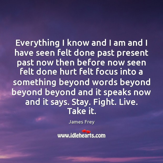 Everything I know and I am and I have seen felt done James Frey Picture Quote