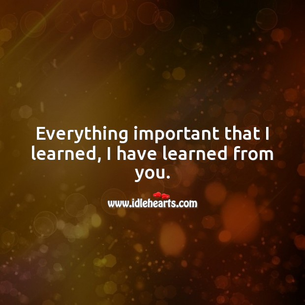 Everything important that I learned, I have learned from you. Birthday Messages for Sister Image