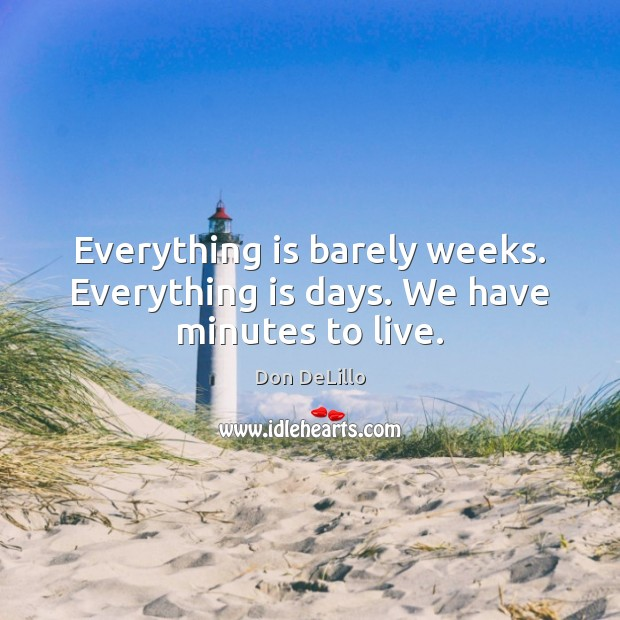 Everything is barely weeks. Everything is days. We have minutes to live. Don DeLillo Picture Quote