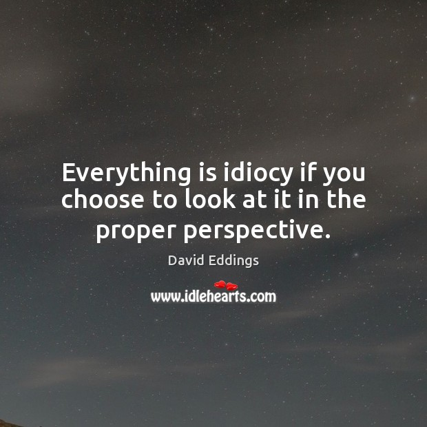 Everything is idiocy if you choose to look at it in the proper perspective. David Eddings Picture Quote