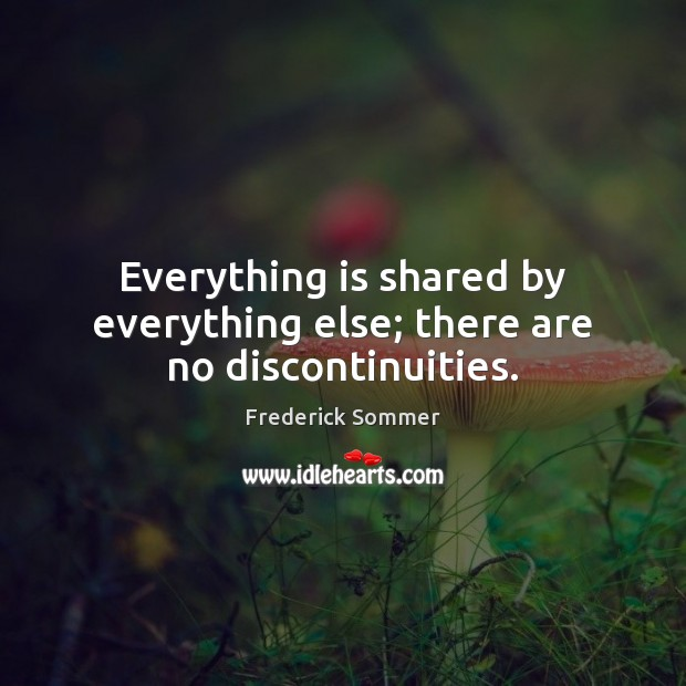 Image, Everything is shared by everything else; there are no discontinuities.