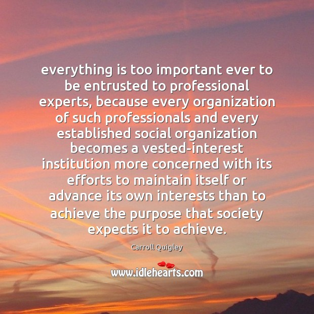 Everything is too important ever to be entrusted to professional experts, because Carroll Quigley Picture Quote