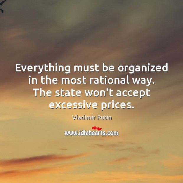 Everything must be organized in the most rational way. The state won't Vladimir Putin Picture Quote