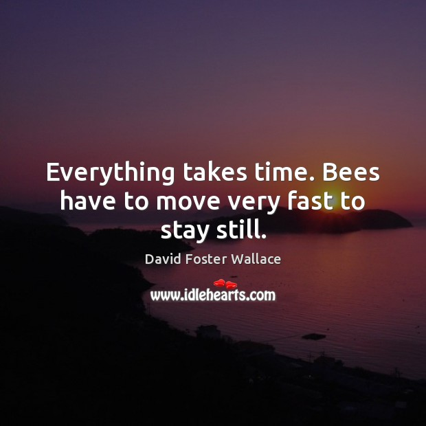 Everything takes time. Bees have to move very fast to stay still. David Foster Wallace Picture Quote
