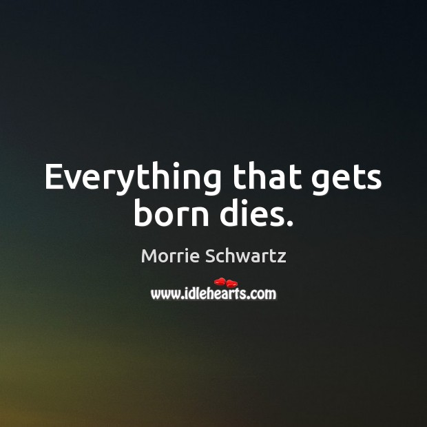 Everything that gets born dies. Image