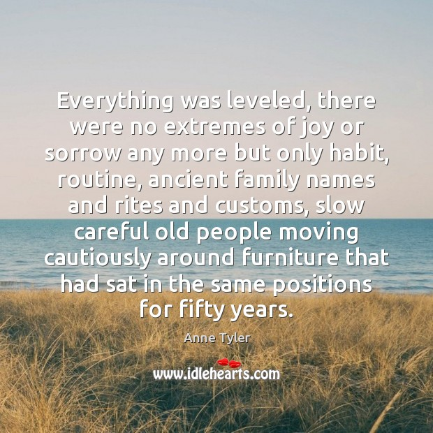 Everything was leveled, there were no extremes of joy or sorrow any Anne Tyler Picture Quote