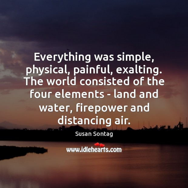 Everything was simple, physical, painful, exalting. The world consisted of the four Susan Sontag Picture Quote