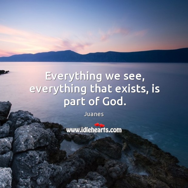Everything we see, everything that exists, is part of God. Juanes Picture Quote