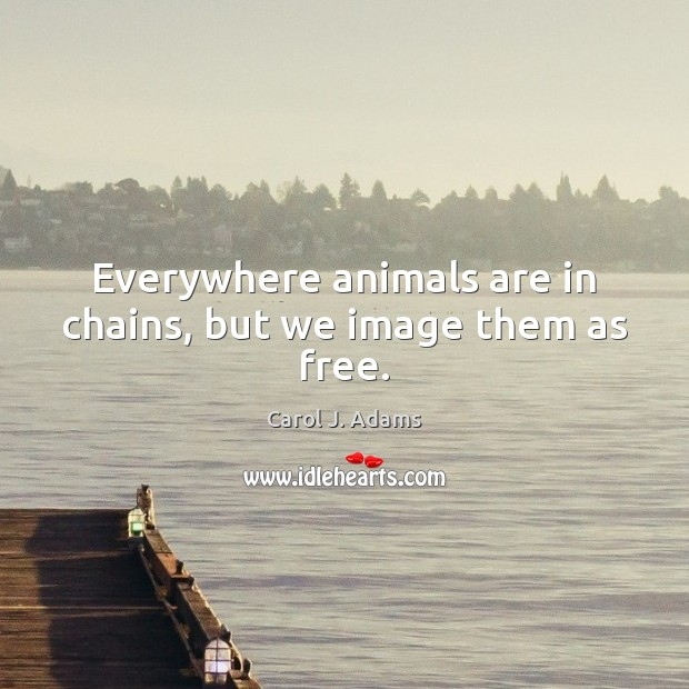 Everywhere animals are in chains, but we image them as free. Image