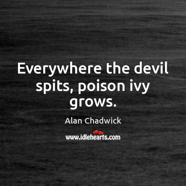 Everywhere the devil spits, poison ivy grows. Alan Chadwick Picture Quote