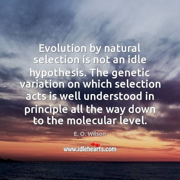 Image, Evolution by natural selection is not an idle hypothesis. The genetic variation
