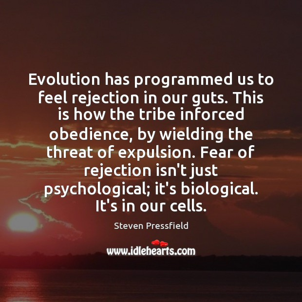 Evolution has programmed us to feel rejection in our guts. This is Steven Pressfield Picture Quote