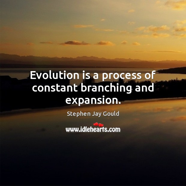 Image, Evolution is a process of constant branching and expansion.