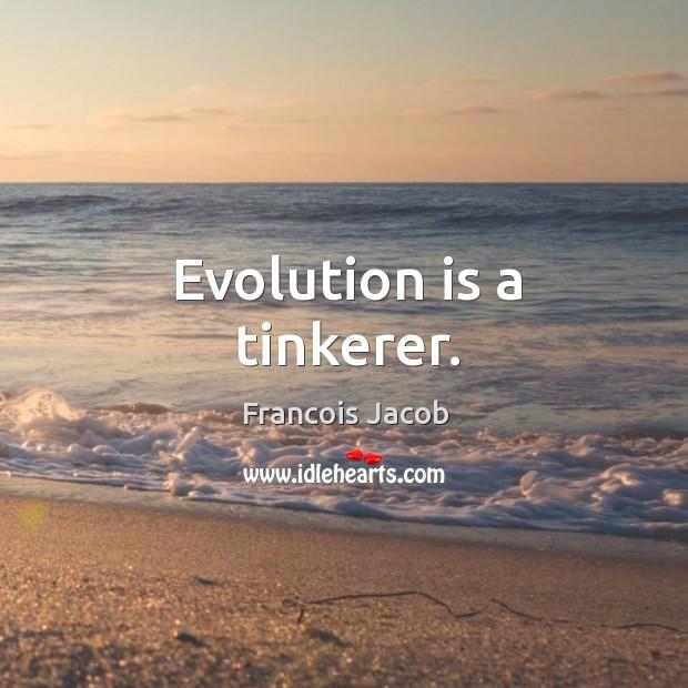 Image, Evolution is a tinkerer.