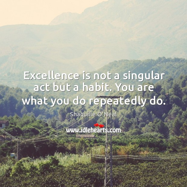 Excellence is not a singular act but a habit. You are what you do repeatedly do. Image