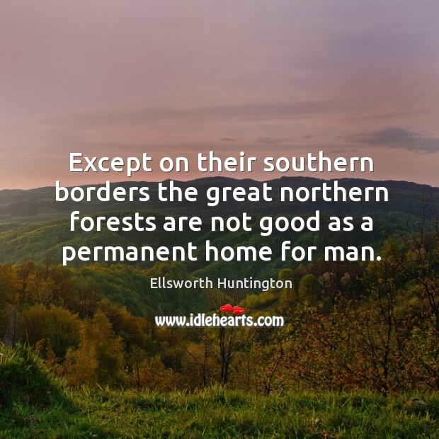 Except on their southern borders the great northern forests are not good as a permanent home for man. Ellsworth Huntington Picture Quote